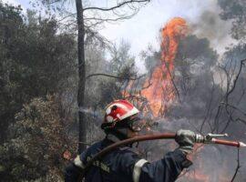 Πυρκαγιά σε δασική έκταση στο Χιλιομόδι Κορινθίας