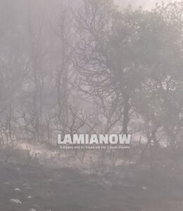 fotialamianow 2 27 08 2021