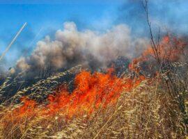 Πυρκαγιά ΤΩΡΑ εν υπαίθρω στην Λεωφόρο Σχιστού