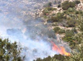 Πυρκαγιά σε αγροτοδασική έκταση στην περιοχή Ασπρα Σπίτια Ηλείας