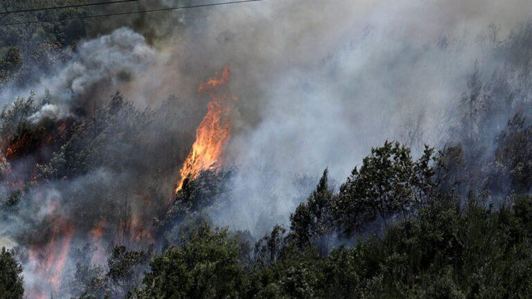 Θεσσαλονίκη:Πυρκαγιά στα Πετροκέρασα κοντά σε κατοικημένη περιοχή