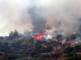 Πυρκαγιά σε δασική έκταση στην περιοχή Πενταλόφο Σερρων