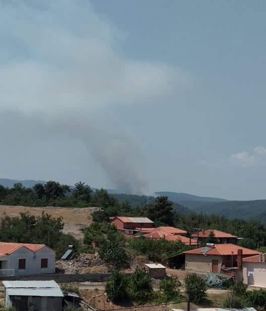 Πυρκαγιά ΤΩΡΑ σε δασική έκταση στην περιοχή Κοτρωνιά στο Σουφλί (Φώτο)