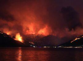 Πυρκαγιές στην Τουρκία: 8 νεκροί στις πυρκαγιές – Οργή για τον Ερντογάν: Πέταξε τσάι σε πυρόπληκτους