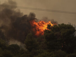 Πυρκαγιά σε δασική έκταση στην περιοχή στην Καυκανιά Ηλείας