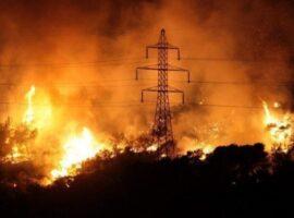 Δασικές πυρκαγιές: 60 το τελευταίο 24ωρο