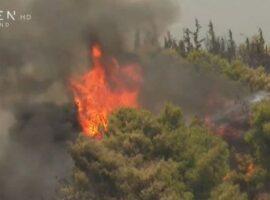 Πυρκαγιά στη Βαρυμπόμπη: Νέες αναζωπυρώσεις τώρα στις Αδάμες