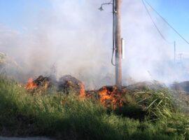 Πυρκαγιά ΤΩΡΑ κοντά στο Πεδίο Βολής στην Κόρινθο