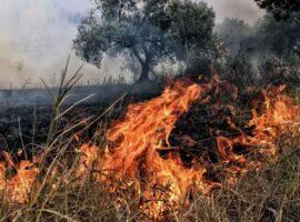 Πυρκαγιά εν υπαίθρω στα εξαμίλια Κορινθίας