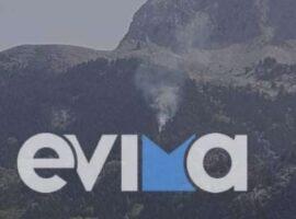 Πυρκαγιά σε δασική έκταση στην περιοχή Καμπιά Ευβοίας