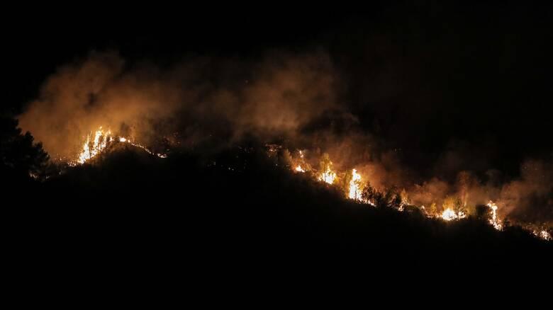Συναγερμός στην Πυροσβεστική για πυρκαγιά μεταξύ Σκλήθρου και Έλαφου