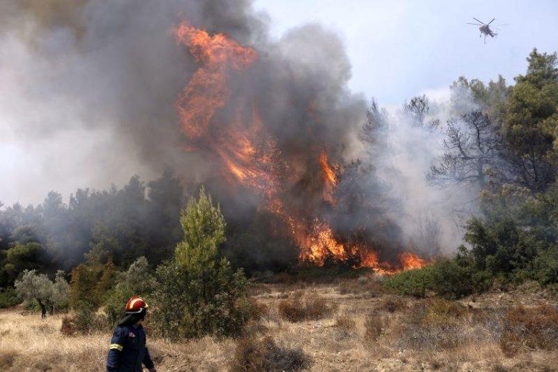 Πυρκαγιά σε χορτολιβαδική έκταση