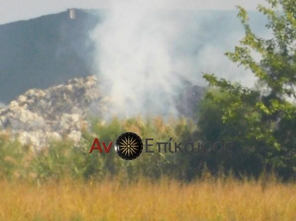Πυρκαγιά σε χώρο αποθήκευσης βάμβακος στα Τρίκαλα Ημαθίας