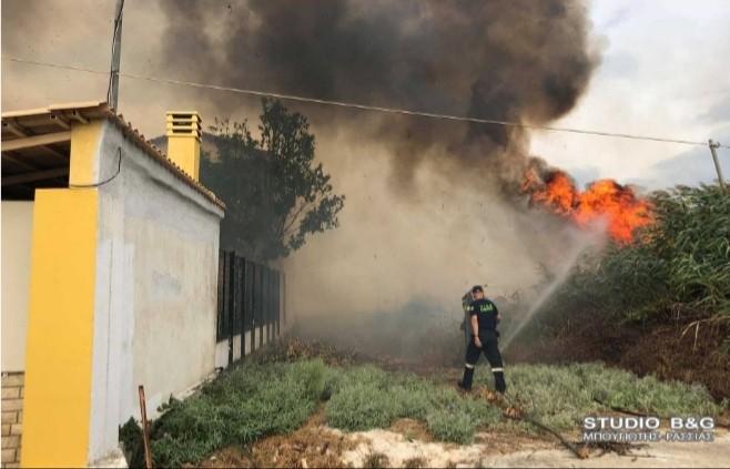 Αργολίδα: Πυρκαγιά στην Αγία Άννα Τημένιο Άργους (Φωτο)