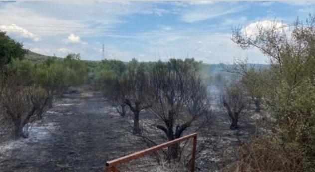Πυρκαγιά εν υπαίθρω στην Κυψέλη Αγρινίου (Φωτο - Βίντεο)