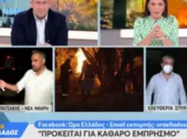 Νέα Μάκρη: Διοικητής Πυροσβεστικής Υπηρεσίας Δυτικής Αττικής: «Πρόκειται για ξεκάθαρο εμπρησμό» (vid)