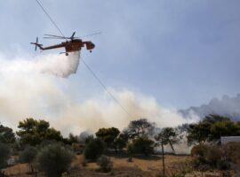 Πυρκαγιά ΤΩΡΑ σε χορτολιβαδική έκταση στο Μεσόβουνο Κοζάνης