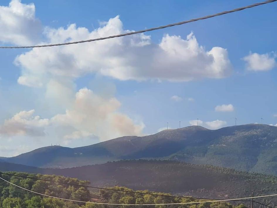 Μεγάλη πυρκαγιά ΤΩΡΑ σε δασική έκταση στις Ερυθρές Αττικής
