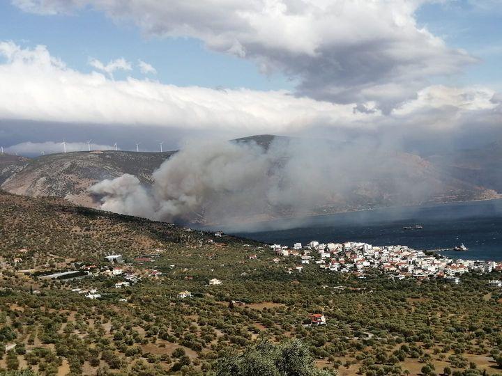 Πυρκαγιά σε χαμηλή βλάστηση στην περιοχή Παραλία Διστόμου Βοιωτίας