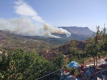 Μεγάλη πυρκαγιά ΤΩΡΑ σε δασική έκταση στην περιοχή Αβραμιάνικα Ανατολικής Μάνης (Φωτο)