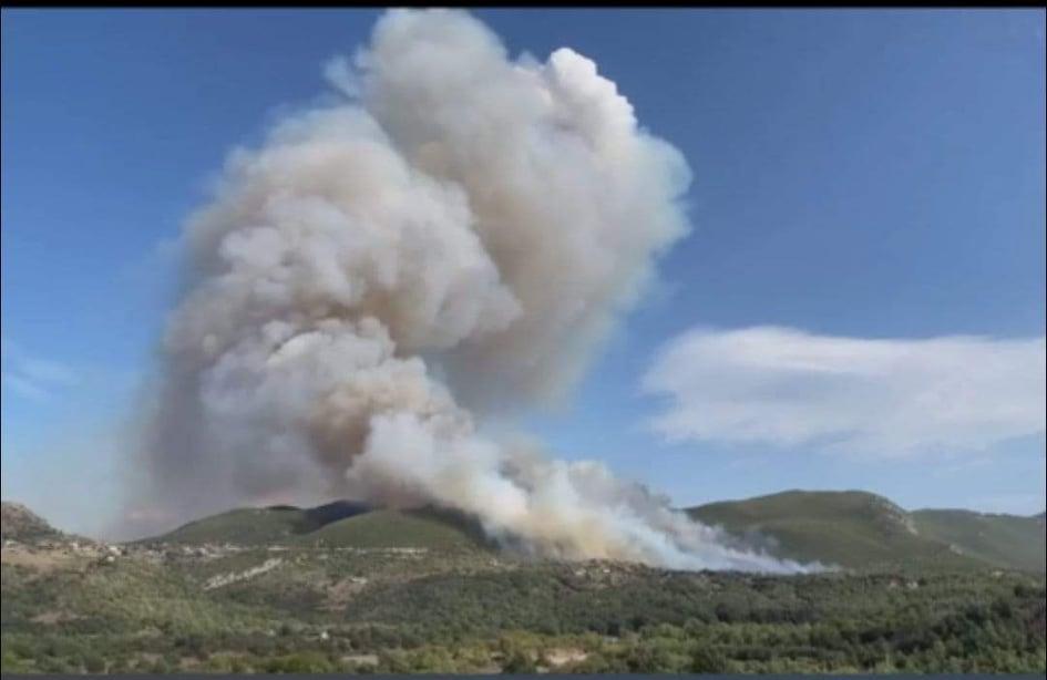 Μεγάλη πυρκαγιά ΤΩΡΑ σε δασική έκταση στα Καλύβια Μεγαλόπολης (Φωτο)