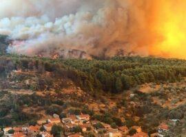 WWF: Νέο πιλοτικό πρόγραμμα για δασικές πυρκαγιές με εφαρμογή της μεθόδου προδιαγεγραμμένης καύσης.