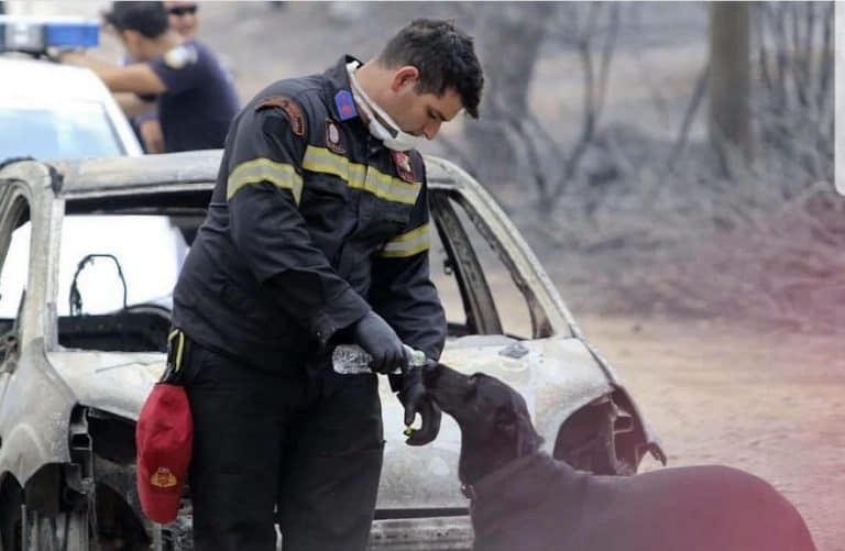 Ευχαριστώ στους πυροσβέστες, τους αφανείς μας ήρωες