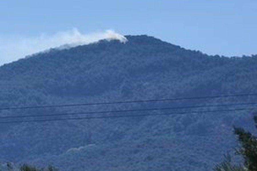 Πυρκαγιά σε δασική έκταση στην περιοχή Καρυωνα Μυτιλήνης
