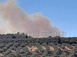 Πυρκαγιά σε δασική έκταση βορειοδυτικά της Αταλάντης (Φωτο)