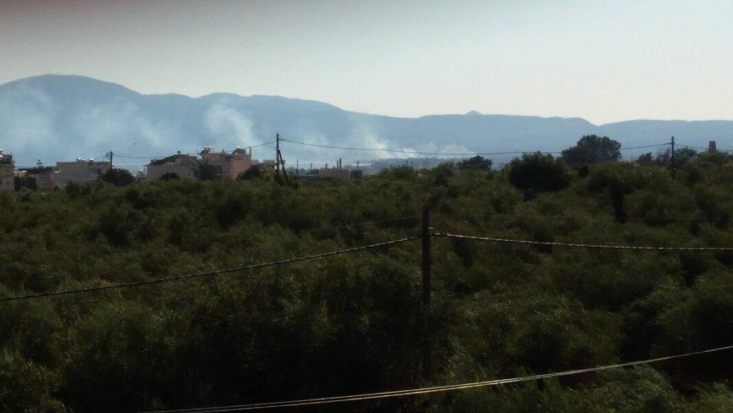 Πυρκαγιά σε καλαμιές