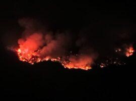 Πυρκαγιά σε δασική έκταση στα Φάρσα Κεφαλονιάς