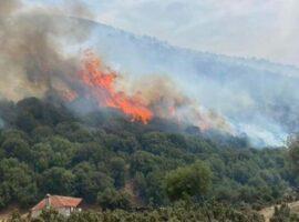 Υπό έλεγχο τέθηκαν οι δασικές πυρκαγιές σε Αγία Παρασκευή Αχαρνών και Κάλαμο Αττικής