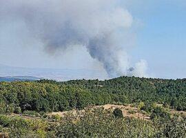 Πυρκαγιά ΤΩΡΑ σε δασική έκταση στην θέση Ψήλωμα στο Κιλκίς