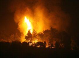 Πυροσβεστική: 58 δασικές πυρκαγιές το τελευταίο 24ωρο