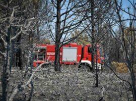 Πυρκαγιά στην Πάρνηθα: Ανακριβής η καταγγελία σε βάρος 40χρονου για εμπρησμό – Αφέθηκε ελεύθερος