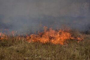 Επιβολή διοικητικού προστίμου για πυρκαγιά στην Θεσσαλονίκη