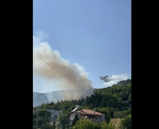 Πυρκαγιά ΤΩΡΑ σε δασική έκταση στις Αχαρνές Αττικής (Φωτο)