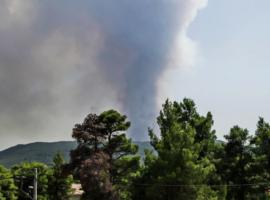 Πυροσβεστική: 35 δασικές πυρκαγιές το τελευταίο 24ωρο