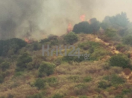 Πυρκαγιά ΤΩΡΑ σε δασική έκταση στα Χανιά (Φωτο)