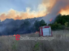 Πυρκαγιά σε δασική έκταση στο ΤριφύλλιΚαλαμπάκας (Βίντεο)