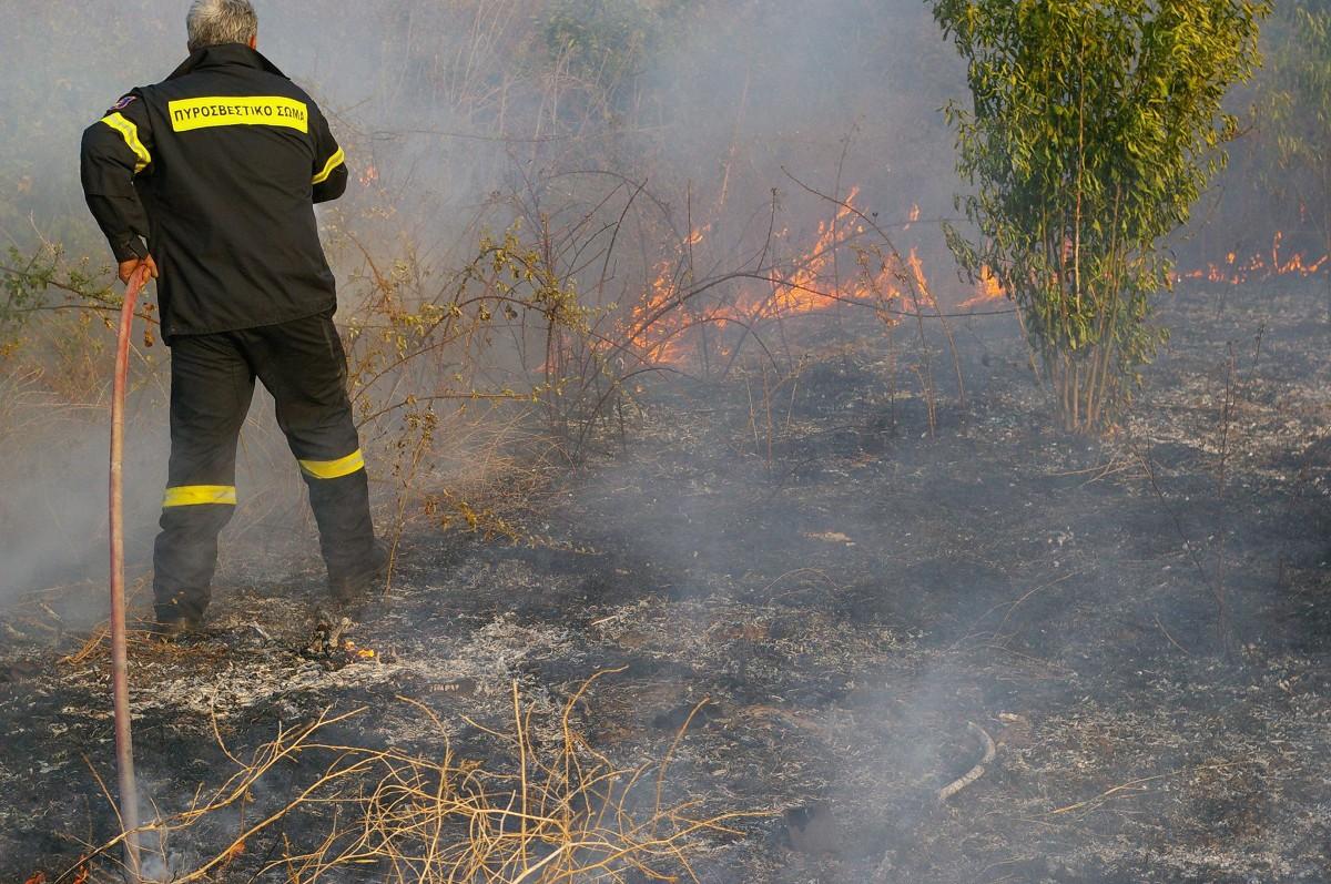 Σέρρες: Πρόστιμο σε άνδρα για πυρκαγιά σε ξερά χόρτα στο Δημητρίτσι
