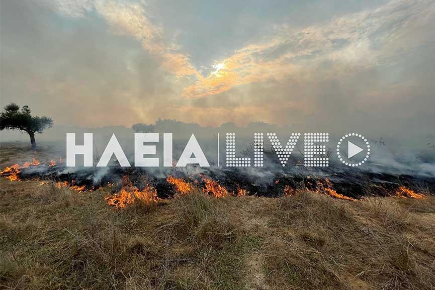 Πυρκαγιά σε χορτολιβαδική έκταση στον Αγ. Γεώργιο στην Ηλεία (photos)