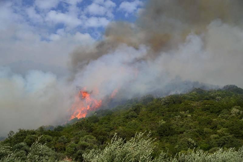 Πυροσβεστική: 50 δασικές πυρκαγιές το τελευταίο 24ωρο