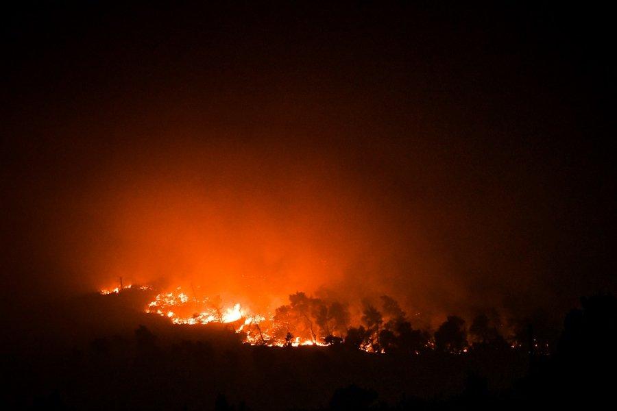 Πυρκαγιά ΤΩΡΑ σε χαμηλή βλάστηση στην περιοχή του Μαραθώνα