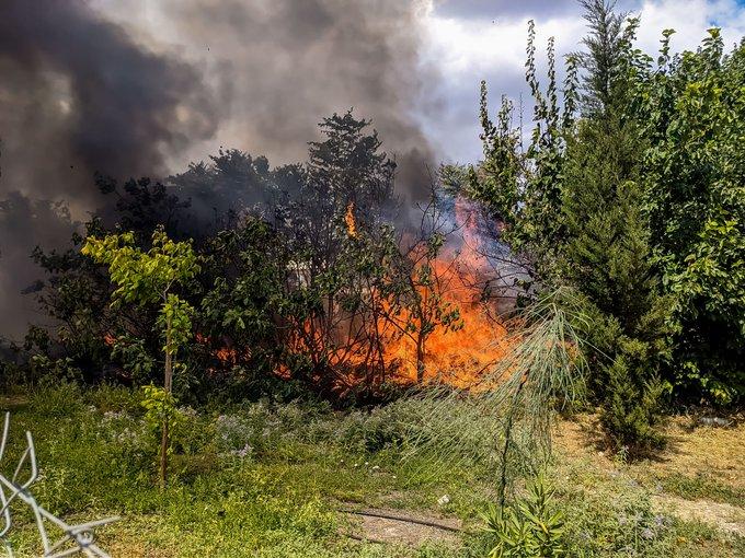 Πυρκαγιά ΤΩΡΑ σε δασική έκταση στην Καστοριά