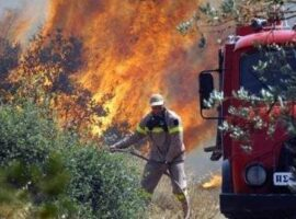 Πυροσβεστική: 41 δασικές πυρκαγιές το τελευταίο 24ωρο