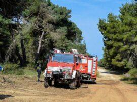Πρόσληψης προσωπικού σε Δασικές Υπηρεσίες της Αττικής