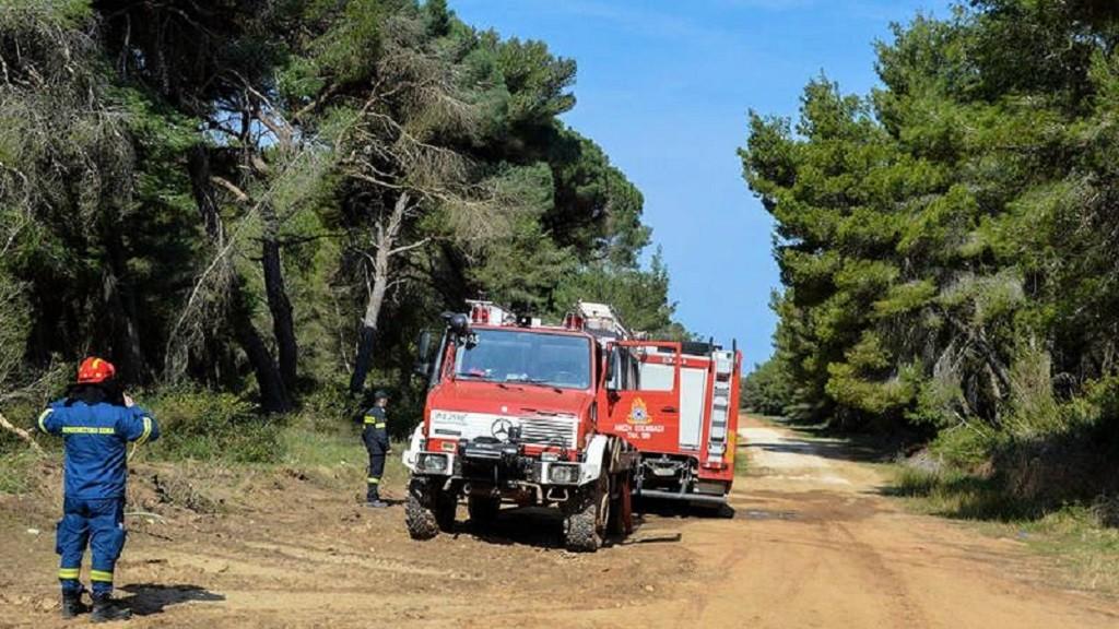 Εργασία : Πρόσληψης προσωπικού σε Δασικές Υπηρεσίες της Αττικής