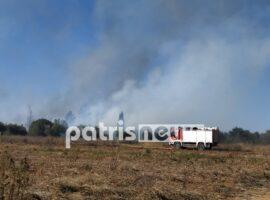 Πυρκαγιά στην περιοχή των Δουνέικων Ηλείας