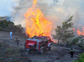 Συναγερμός για πυρκαγιά κοντά στο δάσος της Κέρης στο Ηράκλειο Κρήτης